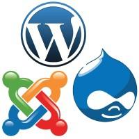 Какие платформы для веб проектов чаще требуют заказчики