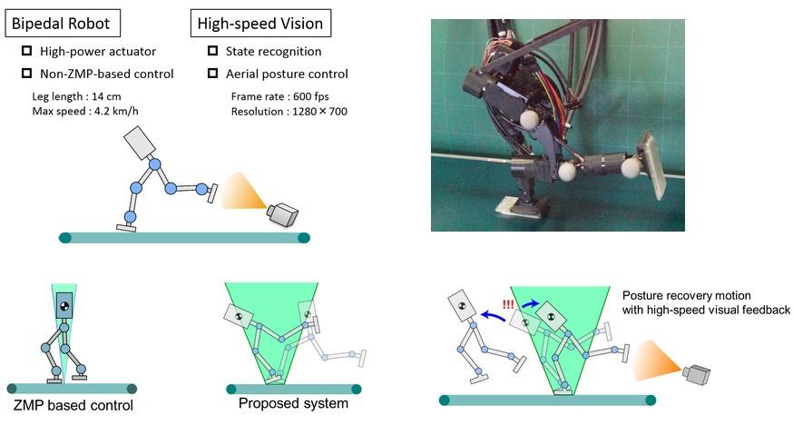 В Университете Токио разработали быстрого двуногого робота бегуна с новой системой балансировки
