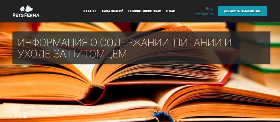 Зачем нужны стартап акселераторы: опыт российских проектов в программе ФРИИ