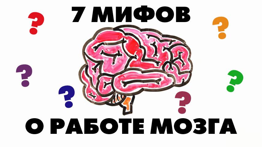 7 мифов о работе мозга