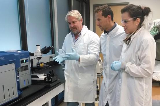 Nanoparticle Platform: технология ранней диагностики тяжелых заболеваний от Google