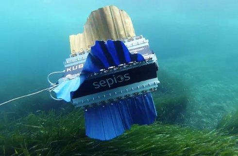 Робот рыба улучшит подводную съёмку