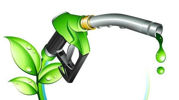 Широкомасштабное использование биотоплива не имеет смысла - 1