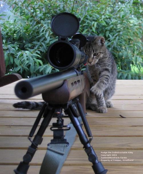 Как мы (не) нашли снайпера при помощи квадрокоптера - 2