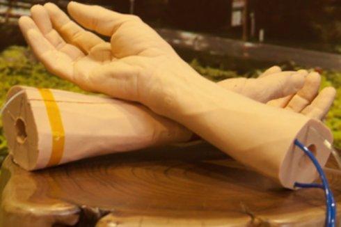 В Google случайно создали искусственную человеческую кожу