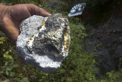Бактерии создали крупнейшее месторождение золота на Земле