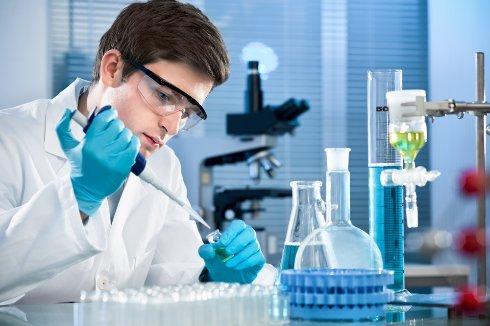 Ученые вырастили ткани человеческого желудка