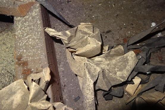 Страницы из блокнота Алана Тьюринга использовались для изоляции крыши - 8