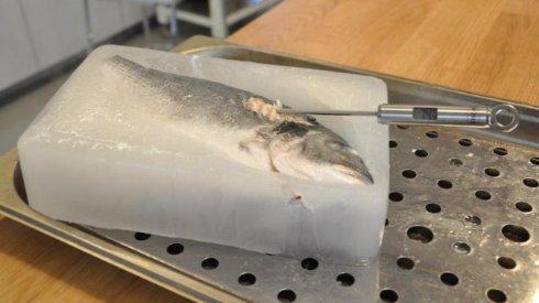 Изобретена микроволновая печь нового поколения