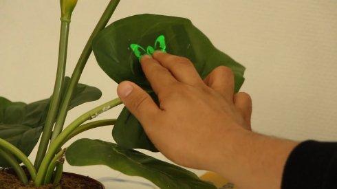 Придуман простой и дешевый способ производства сенсорных дисплеев в домашних условиях