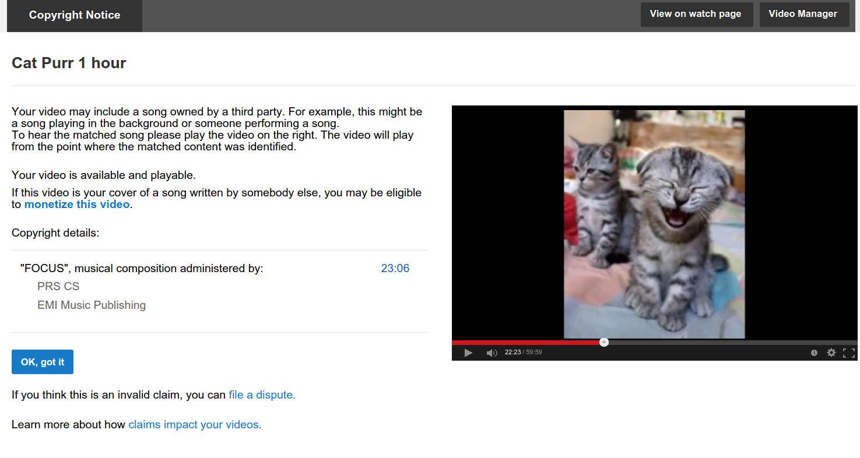 YouTube пометил ролик с мурчаньем кота как нарушение музыкального копирайта - 2
