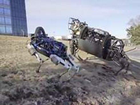 Создана первая собака робот, которого можно брать с собой на прогулки (ВИДЕО)