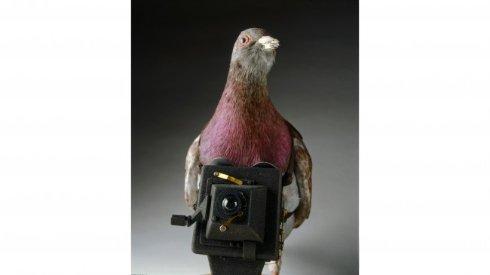 13 самых интересных шпионских фотокамер всех времен