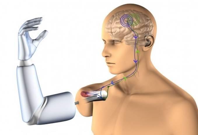 Нанороботы в нашем мозге - 3