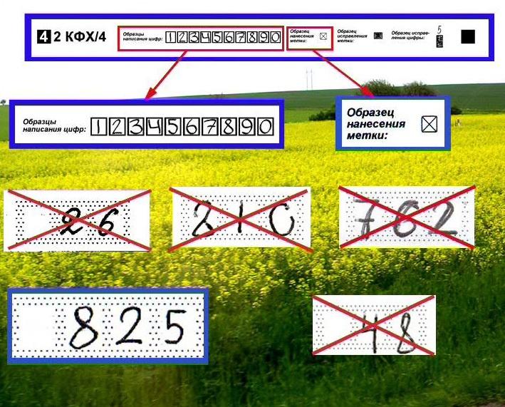 Всероссийская перепись населения: как тоссятся ваши данные - 5