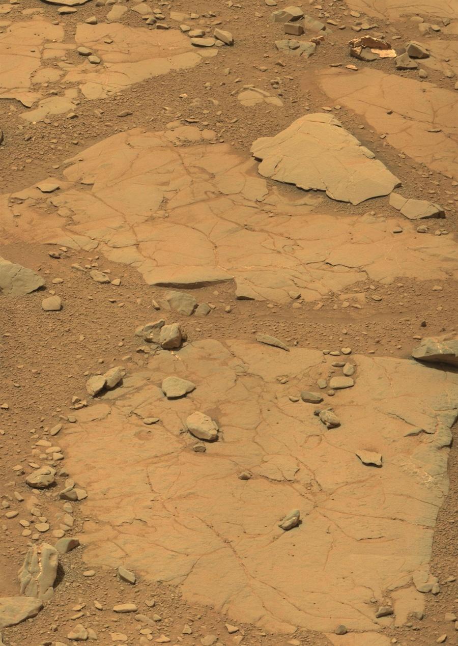 Как в новостях о Марсе появляются динозавры - 4