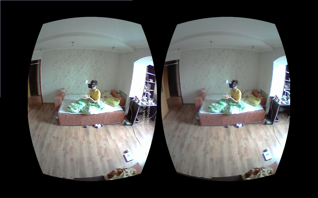 «Выход из тела» на несколько дней при помощи Oculus Rift - 4