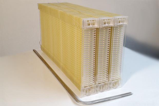 Улей с вытекающим мёдом собрал 2 млн долларов - 1