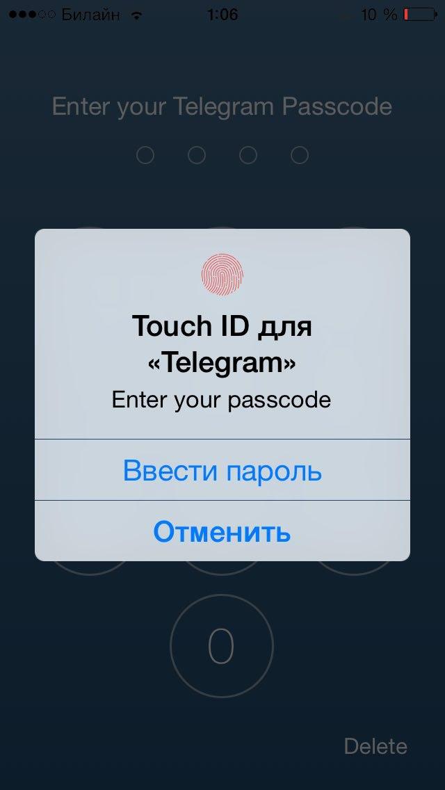 Дуров скрестил «инстаграм» и секретные чаты - 8