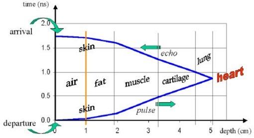 Как умные часы, спортивные трекеры и прочие гаджеты измеряют пульс? Часть 2 - 18