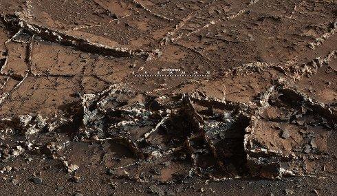 В NASA заявили о том, что нашли на Марсе странный Город сад