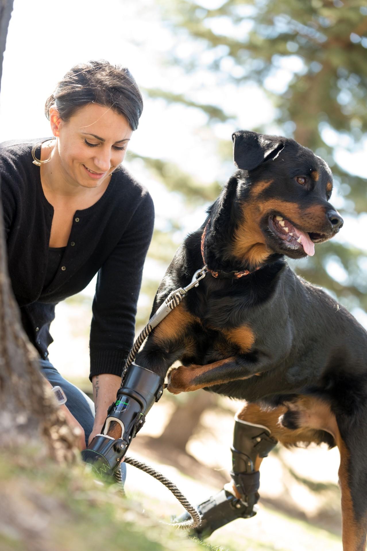 БРУТальная история со счастливым концом: пес с обмороженными лапами получил современные протезы - 4