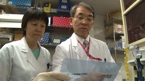 Благодаря распределенным вычислениям совершен научный прорыв в лечении детского рака - 1
