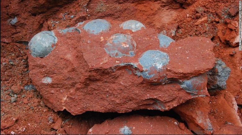 Дорожные рабочие обнаружили окаменевшую кладку яиц динозавров в Китае - 1