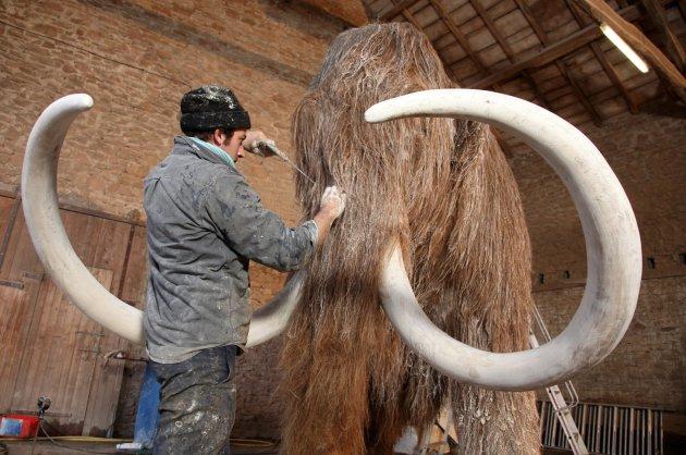 Проект «Мамонт»: возвращаем древних гигантов к жизни - 1