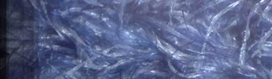 Что можно «выжать» из usb-микроскопа - 11