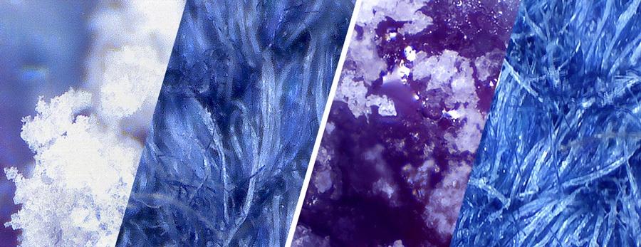 Что можно «выжать» из usb-микроскопа - 1