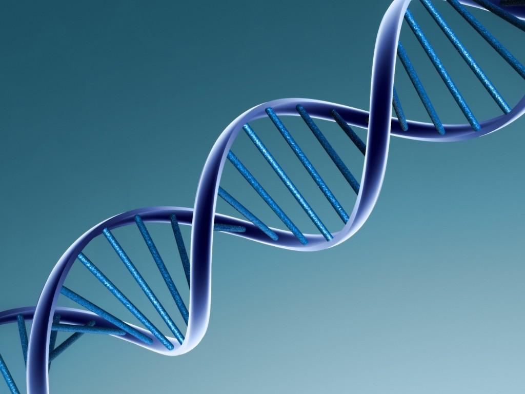 Осаждение ДНК на кухне - 1