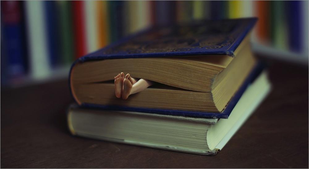 Охота на лицензионный контент: капкан для книги - 2