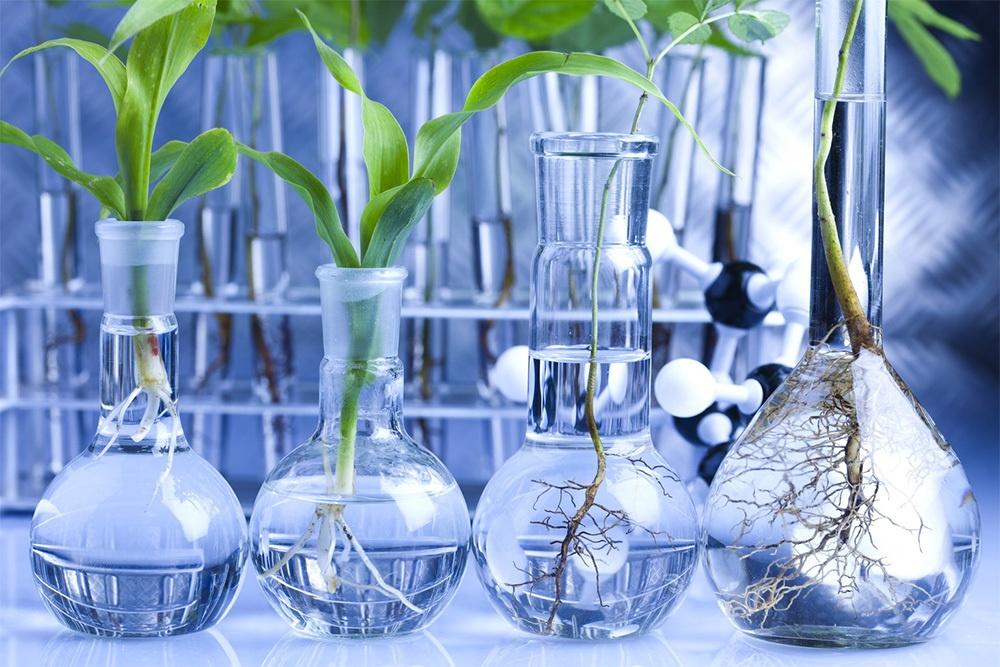 Будущее биотехнологий - 2
