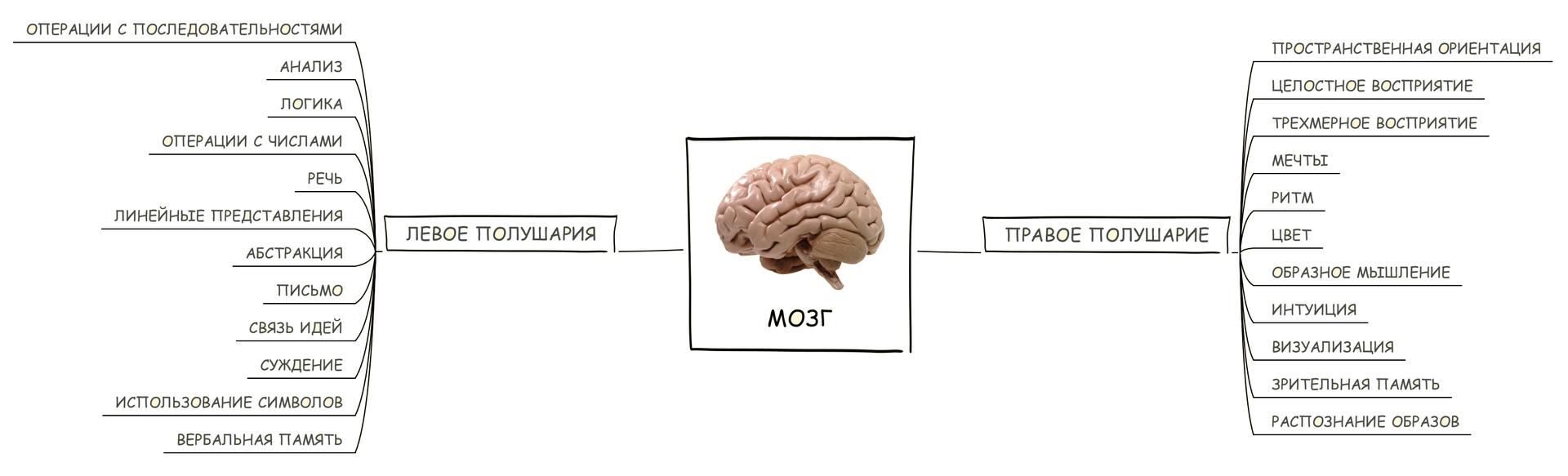 Mind Mapping, или как заставить свой мозг работать лучше - 13