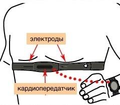 Пульс под контролем? Чем и зачем измерять пульс в движении - 2