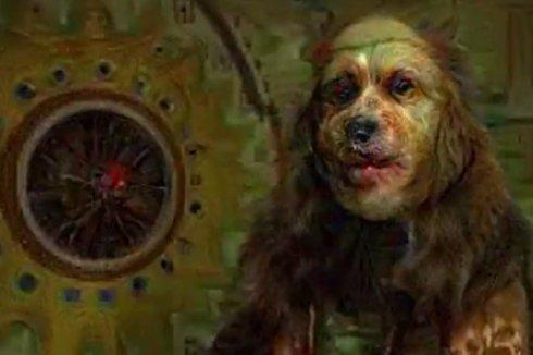 Мир глазами наркомана: наглядное видео от Google