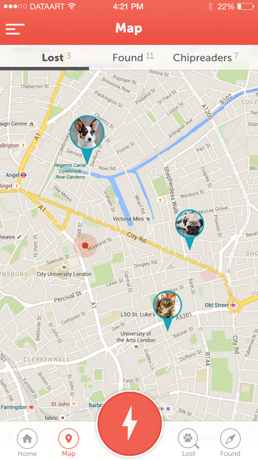DataArt поможет найти пропавших собак - 3