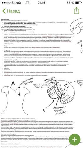 Конспектирование лекций с гаджетами. Путь к Microsoft. Часть третья - 8