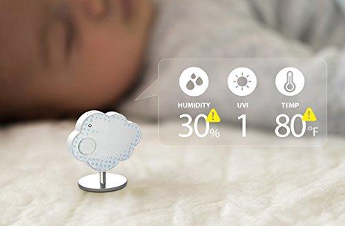 Rooti Climate: маленькая, но очень практичная метеостанция - 19