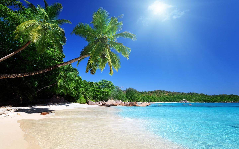 О некоторых стартаперах или Поиск клада на пляже - 2