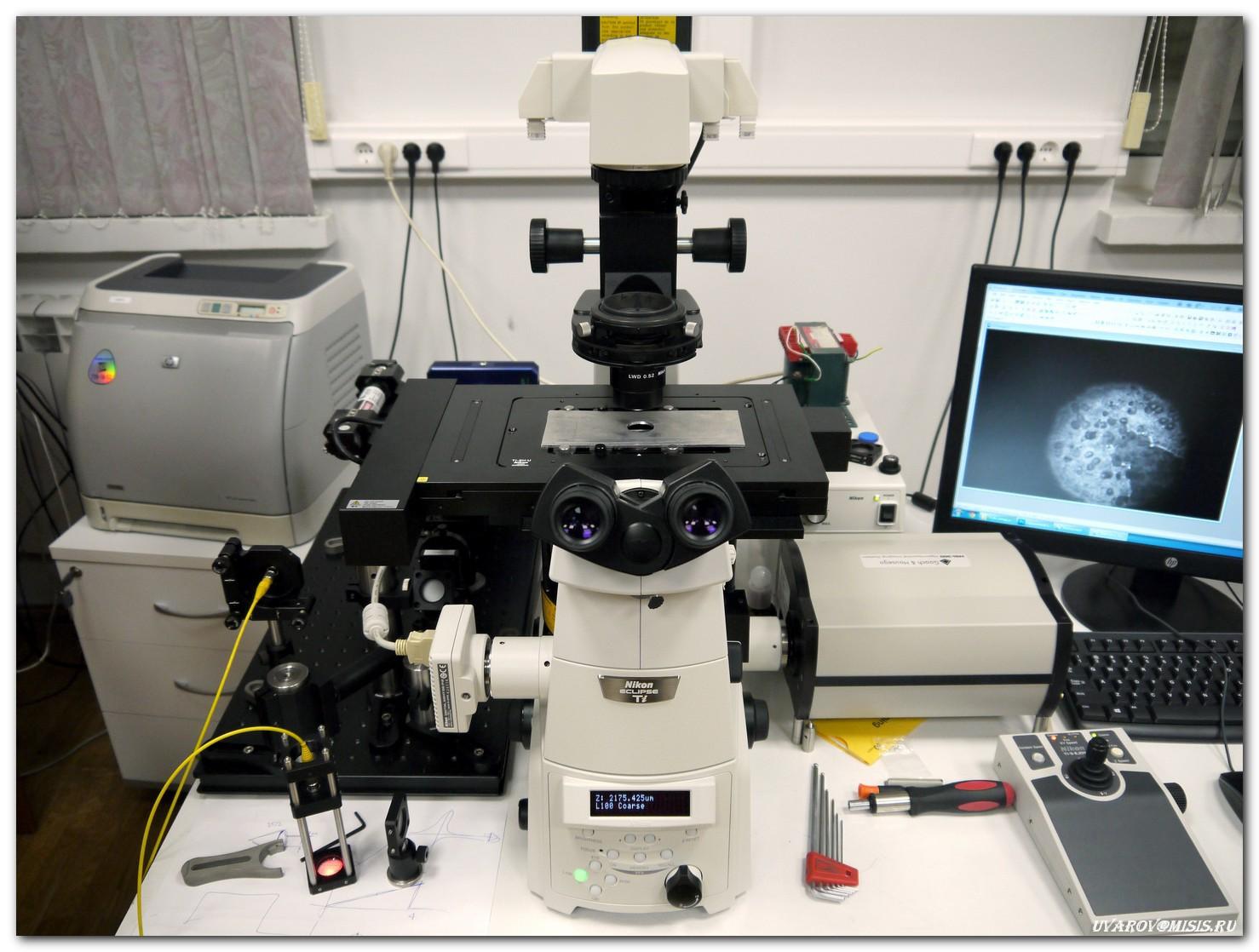 Лаборатории НИТУ «МИСиС»: от разделения наночастиц магнетита до создания квантового компьютера - 11