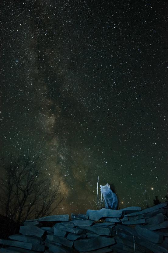 Интрига Персеид или астроосень-2015 - 1