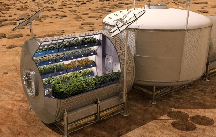 Кушать подано. Астронавты на МКС впервые попробуют выращенный на орбите салат - 2