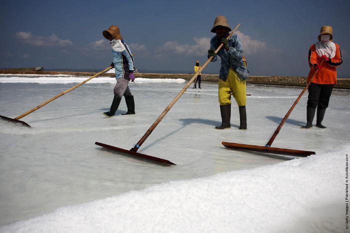Про соль с точки зрения химика - 6