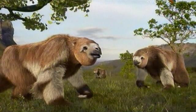 Гигантские ленивцы прошлого могли бы прокладывать линии метрополитена - 3