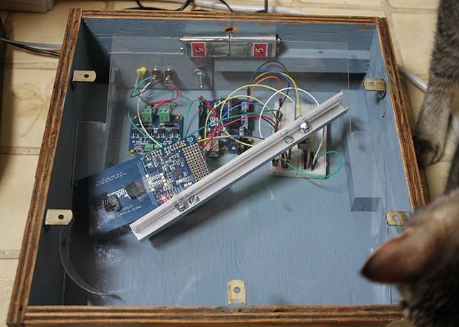 Arduino-кормилка для кошки с охотничьим инстинктом - 1