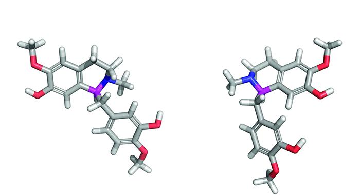 Генетически модифицированные дрожжи вырабатывают опиаты из сахара - 3