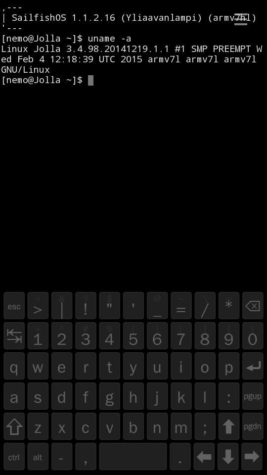 Очередной обзор Sailfish OS или муки выбора подходящей мобильной ОС - 11