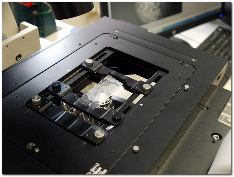 «Диагностировать рак поможет лазер», или Как устроен лазерный флуоресцентный гиперспектральный микроскоп - 5